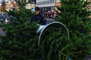Kerstboom verkoop Haarlem