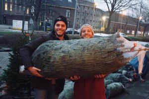 Haarlem Kerstbomen